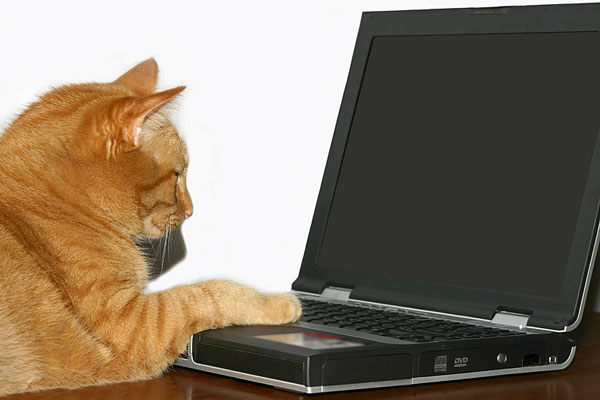 Computing image