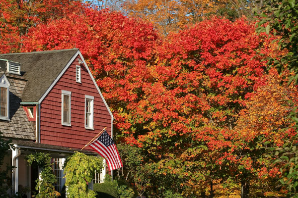 Connecticut image