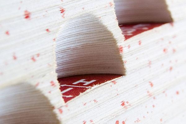 Dictionaries image
