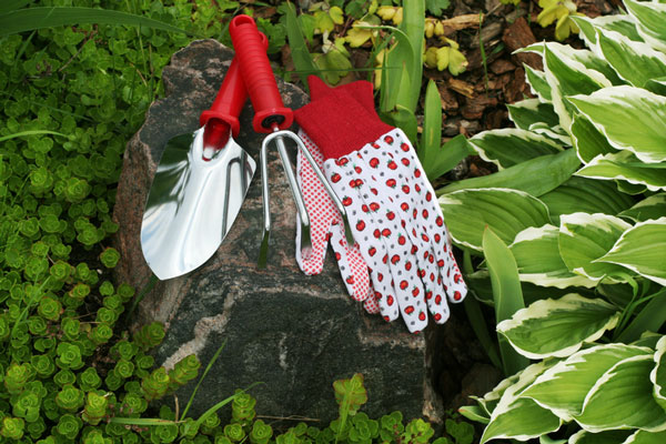 gardening gloves and garden tools