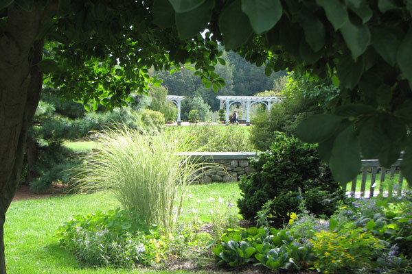 Lawn and Garden image