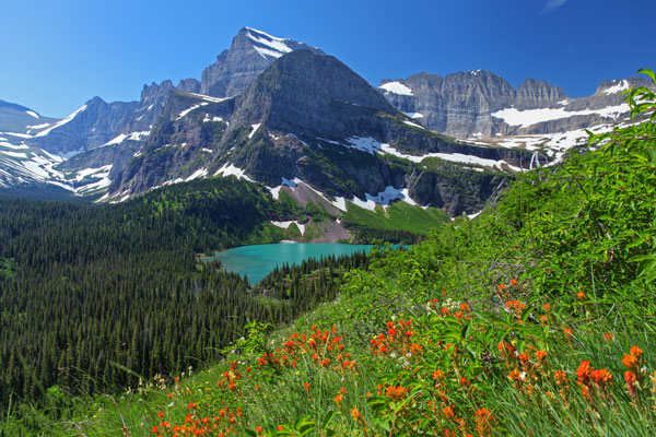 Montana image